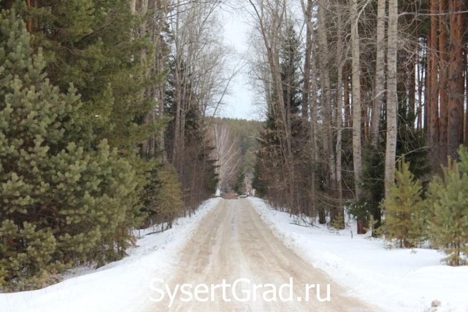 Дорога на Воробьевку