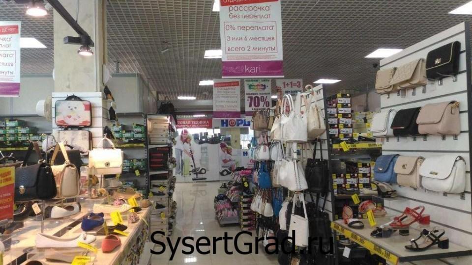 Где в Сысерти красивые женские сумки? В магазине kari?