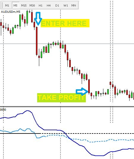 Forex trading groups
