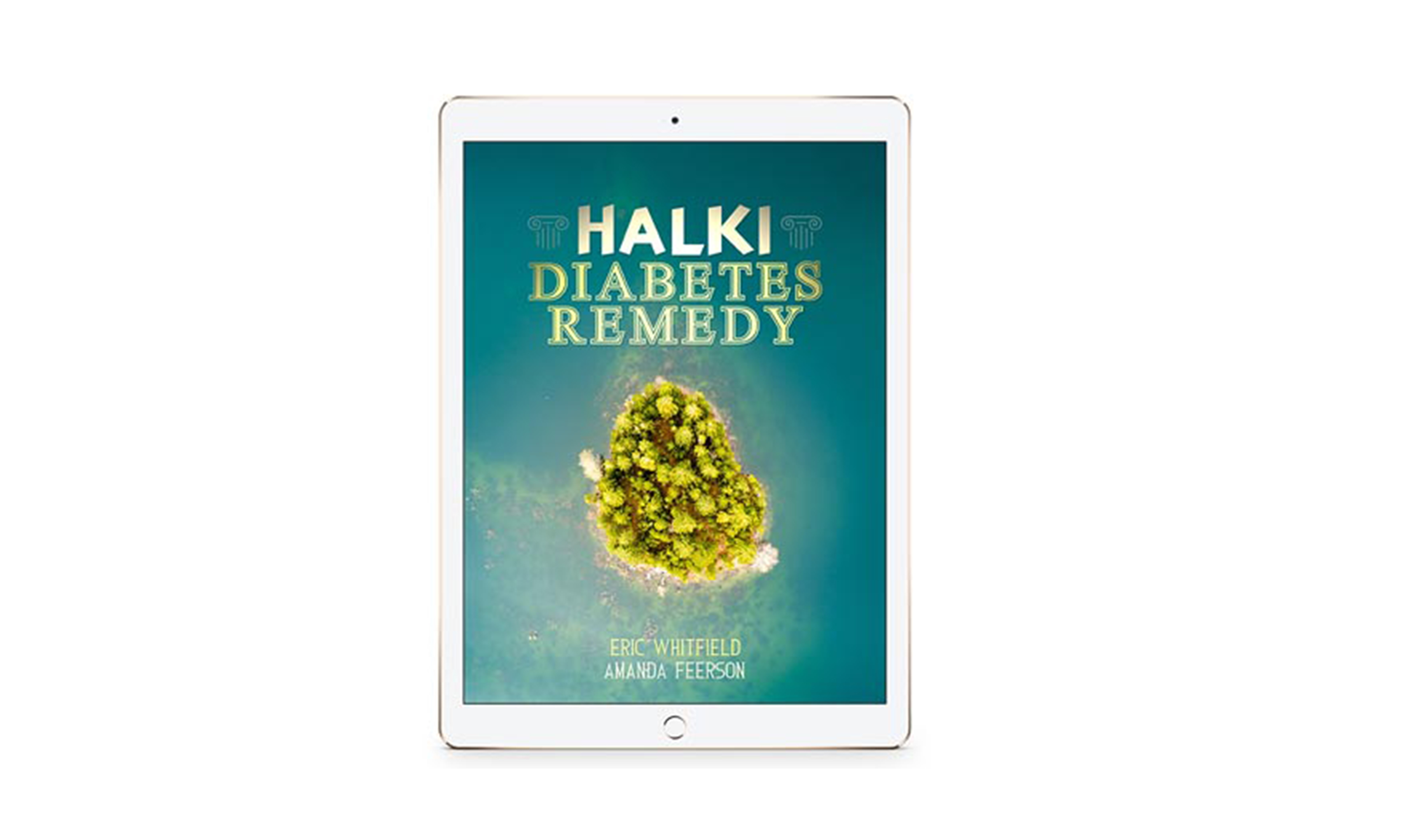 Halki Diabetes  Education Discount June 2020
