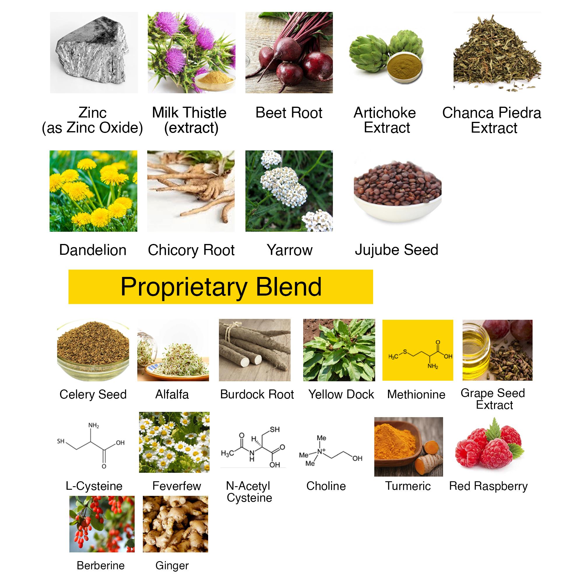 Leptitox ingredients