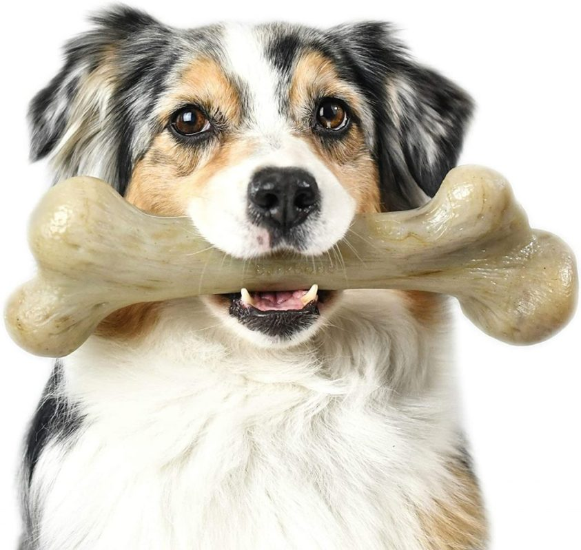 Best Dog Bones For Your Furry Friends