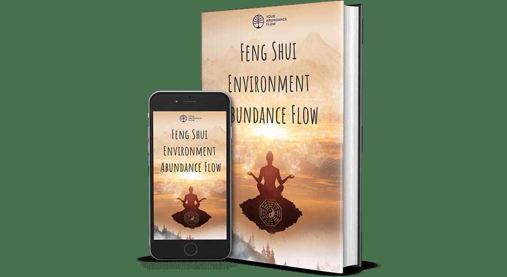 Feng Shui Environment Abundance Flow Reviews