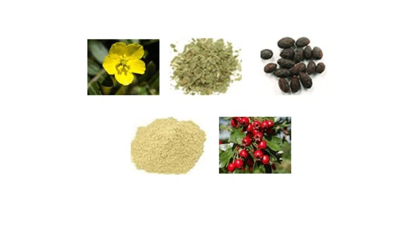 Renown T-Boost Ingredients