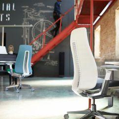 Ergonomic Chair Good Posture Toddlers Plastic Chairs Haworth - Fern Systemcenter