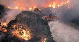 El Papa pide rezar por Australia, devastada por los incendios