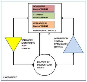 Normative Management – Systemic Steering and Governance