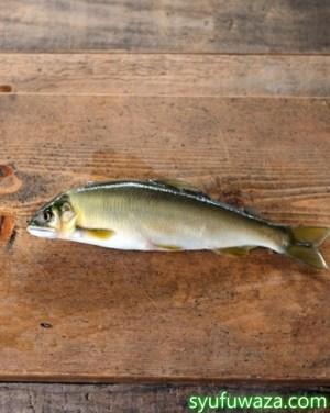 鮎の塩焼きでうろこはどうする?エラと内臓は食べるもの?