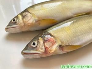 鮎の塩焼きは内臓を取るもの?