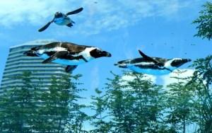 すみだ水族館 空飛ぶペンギン1