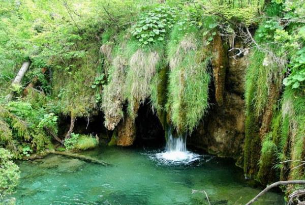 Természetvédelmi terület, patakok és tavak