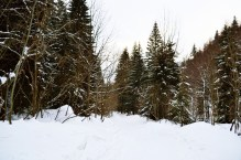 Dumbier, Slovakia