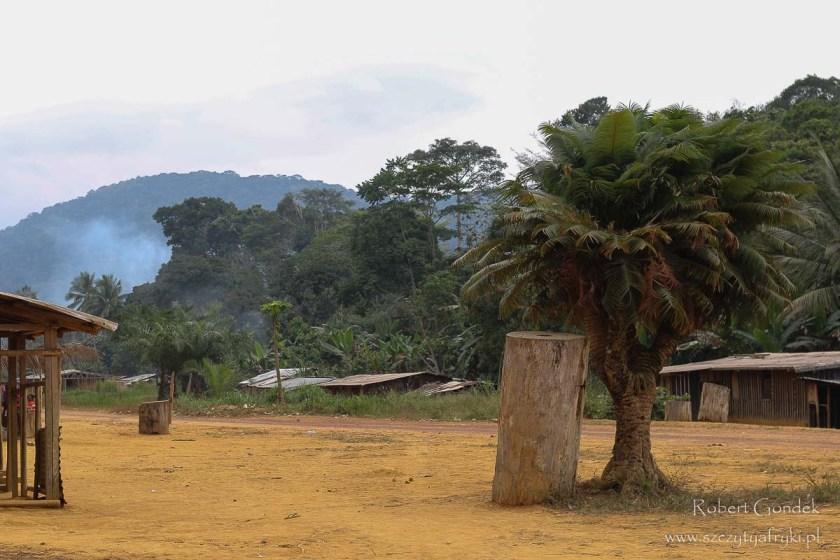 Mount Bengoué - prawdopodobnie najwyższa góra w Gabonie