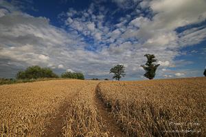 Polska - krajobrazy