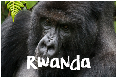 Najładniejsze zdjęcia z Rwandy