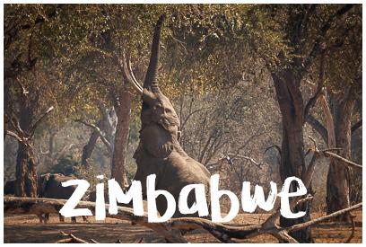 Najładniejsze zdjęcia z Zimbabwe