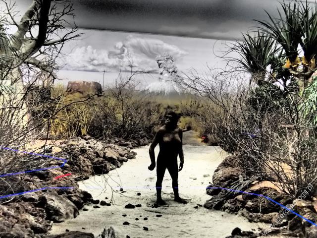 Park Ewolucji Krasiejów