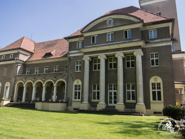 Łosiów, pałac
