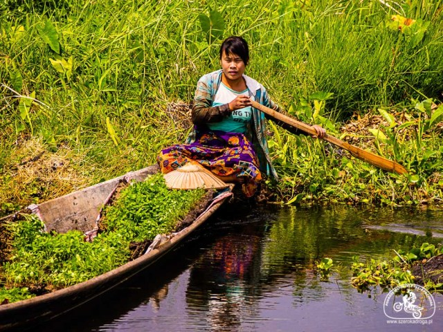 pływające ogrody nad jeziorem Inle, Birma