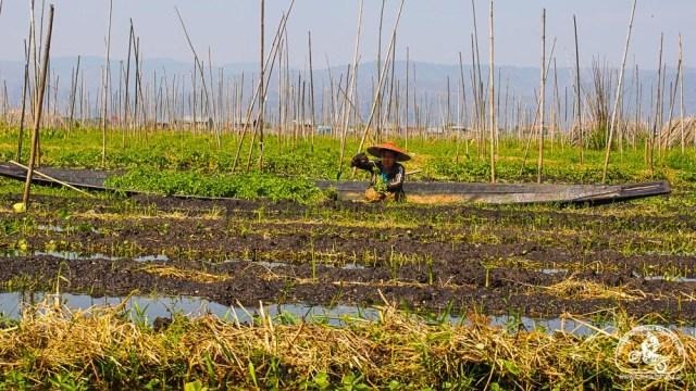 pływające ogrody, atrakcje Birmy