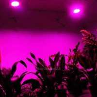 UFO LED Grow Light IR UV Full Spectrum Hydroponic Hydro ...
