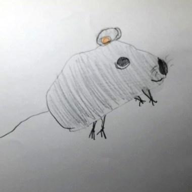 myszka Adeli