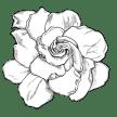 virág png