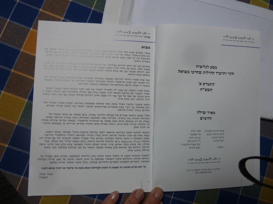 Book Meir Shilloh (2)