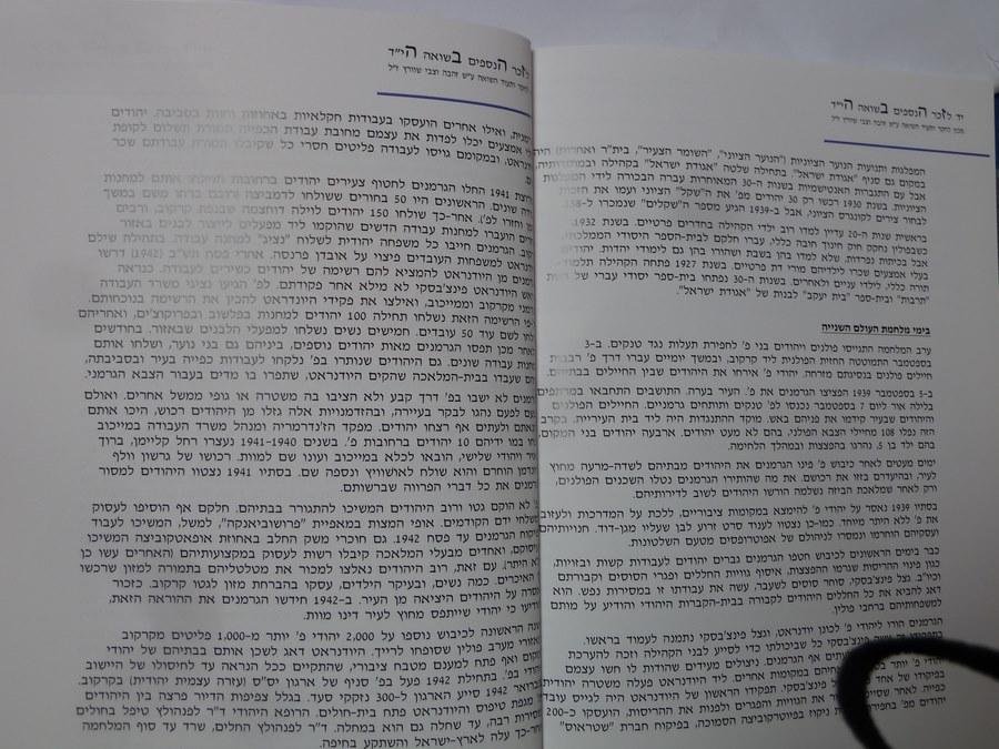 Book Meir Shilloh (8)