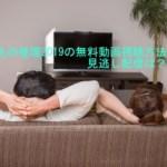 火村英生の推理2019動画無料視聴方法や見逃し配信は?9月29日放送
