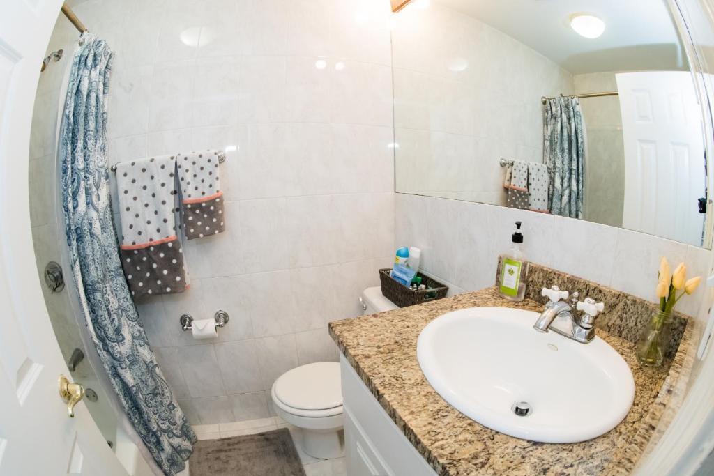 cutler kitchen and bath cabinet kings 雷吉之家公寓 美國波士頓 booking com 住宿相片集