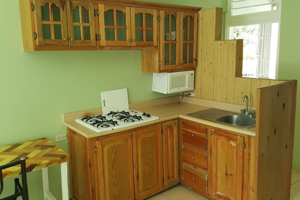 kitchen cupboard jamaica cabinents apartment cool green kingston booking com gallery image of this property