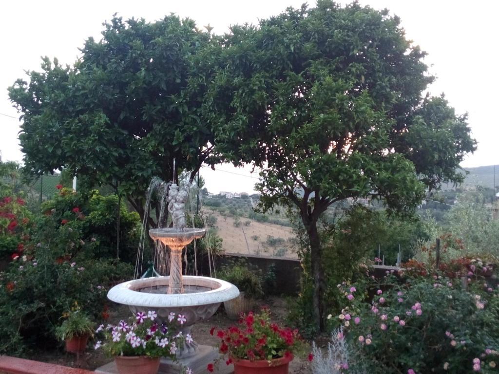 Vacation Home Terrazza sul Mare Perdifumo Italy  Bookingcom