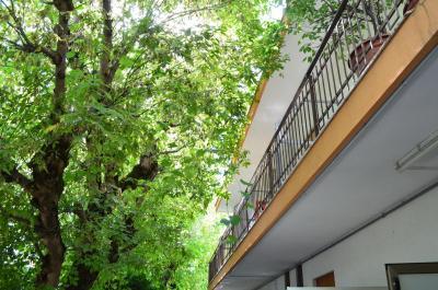 Hotel Casa Mia Lido di Jesolo  Prezzi aggiornati per il 2019