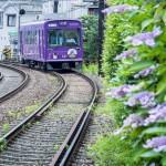 観光ガイド付き初夏の嵐電貸切ツアーで奥深い京都に触れよう