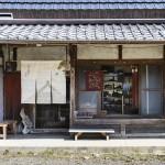 京都の里山・大原の山水で染める柿渋染め体験