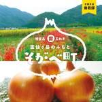 亀岡「まる曽玉ねぎ」がゴロゴロ!特産品とコラボした、ハンバーグ&スープが誕生