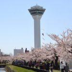 函館の桜開花予想(2020年4月1日 日本気象協会発表)