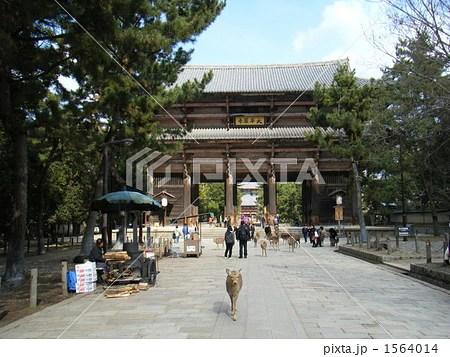 鹿と東大寺の寫真素材 [1564014] - PIXTA