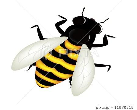 bee cartoonのイラスト素材 [11970519] - PIXTA