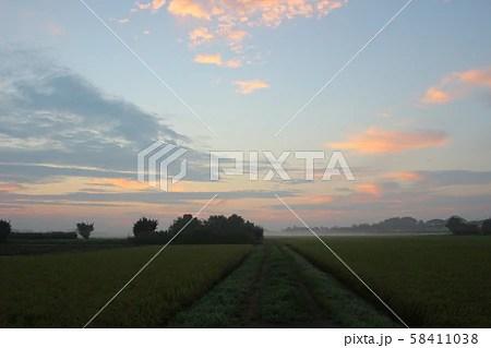 田園の寫真素材 [58411038] - PIXTA
