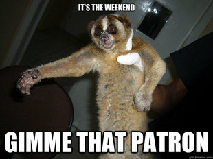 Slow Loris Patron