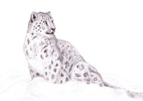Cheetah Color Mutation Guide by ahillamon on DeviantArt