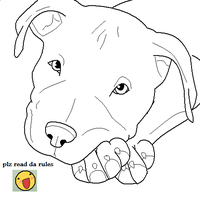 Free Pit Bull Lineart by sewreel on DeviantArt