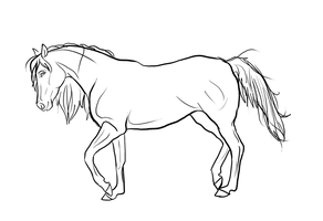 Horse and Girl Line art 1 by mistyofmyheart on DeviantArt