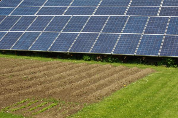 Solar irrigation: what it is and how to do it - What is solar irrigation