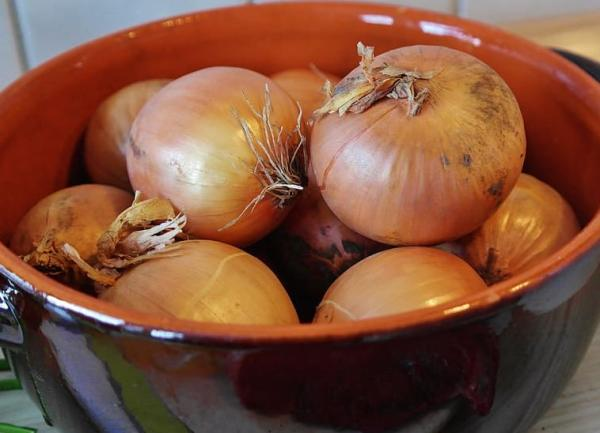 Homemade insecticides for lemon trees - Onion