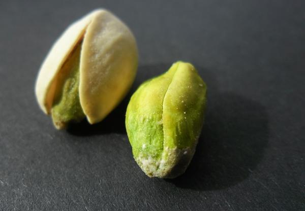 Planting pistachios: how to do it - How to grow pistachios at home - basic care