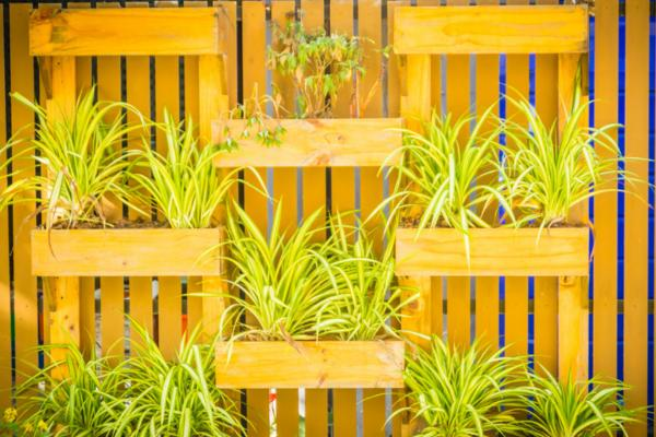 How to make vertical gardens - How to make a vertical garden with pallets