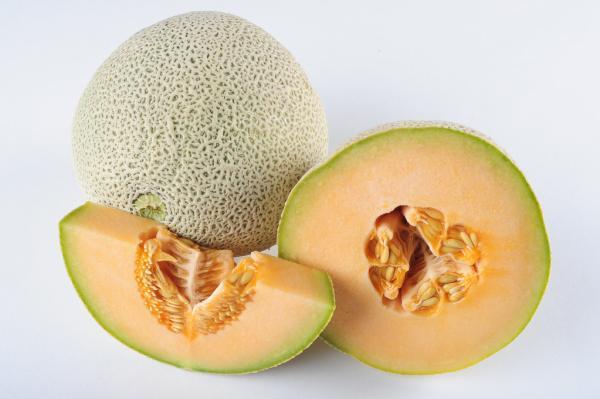 8 types of melons - Cantaloup